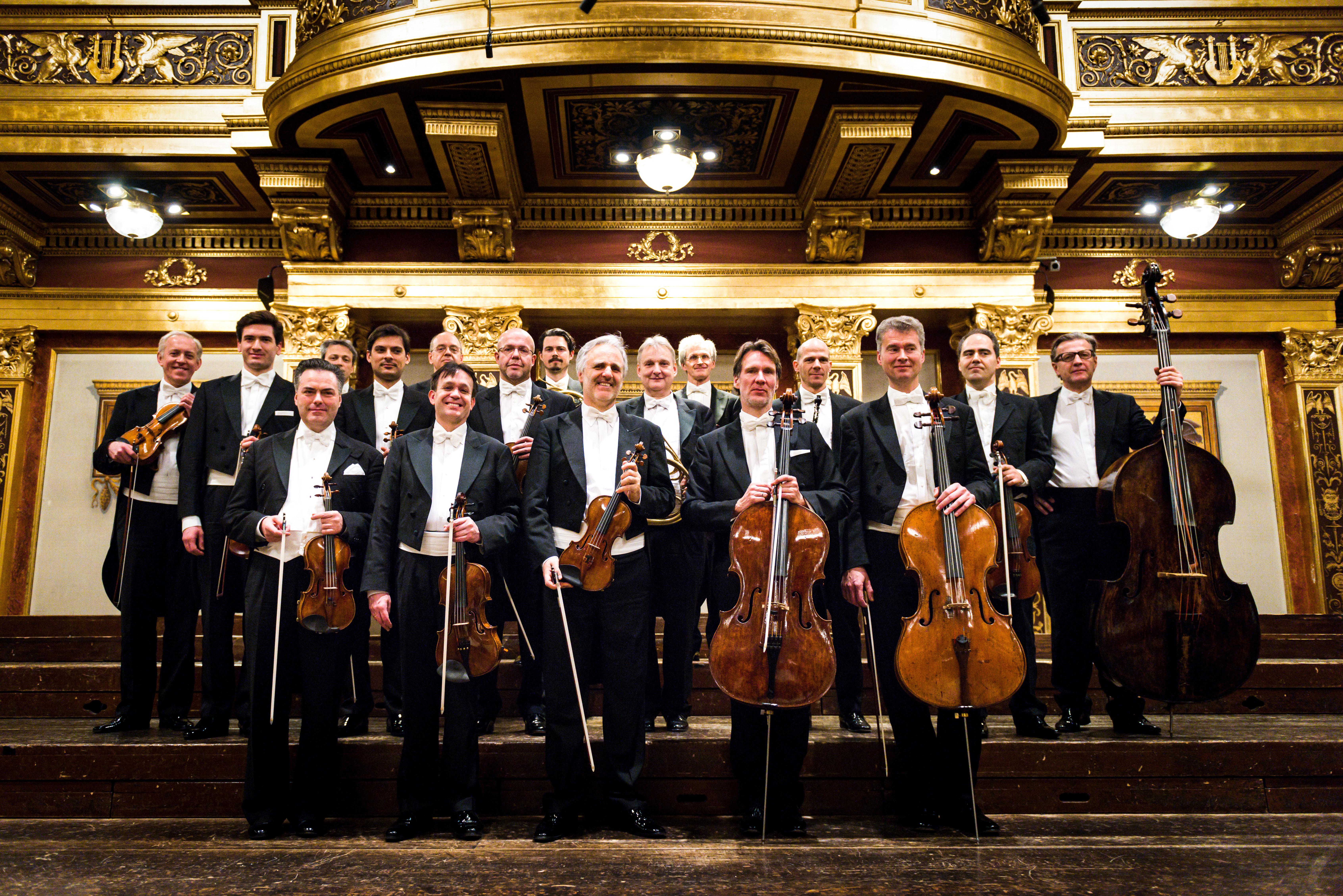 비엔나 & 베를린 챔버 오케스트라